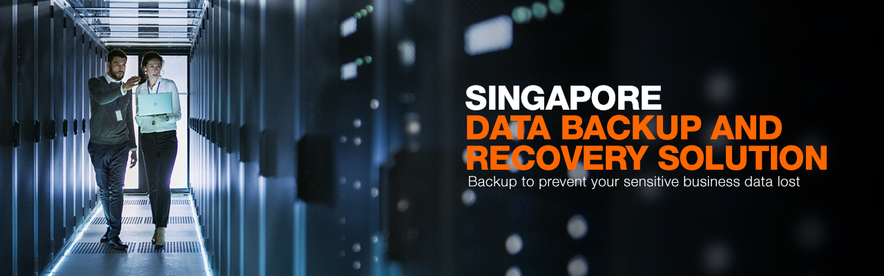 Data Backup and Recovery Solution data backup